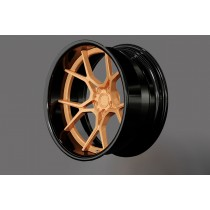 D2 FORGED HS-29